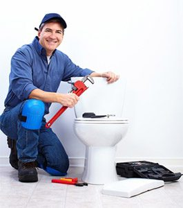 toilet repair watsonville